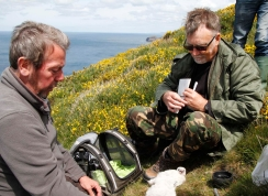 Data collection in Cornwall