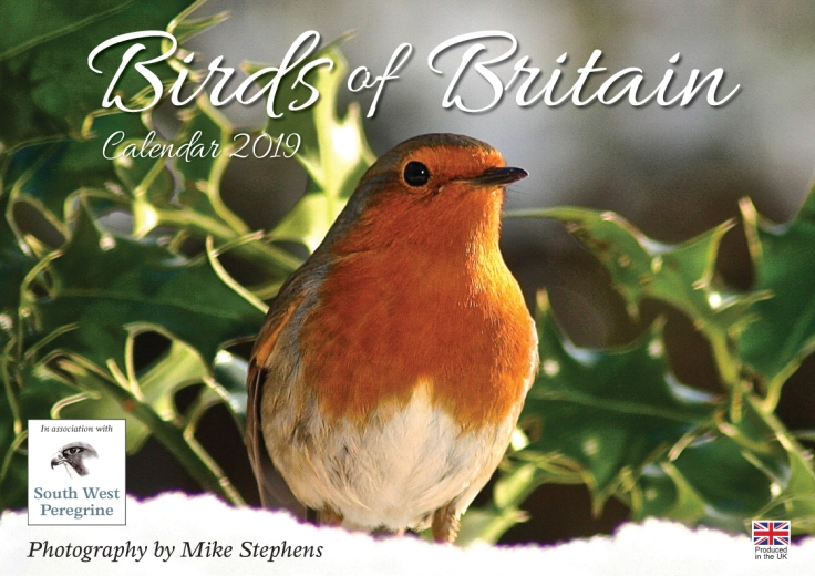 Birds of Britain 2019 - SH0058.qxp