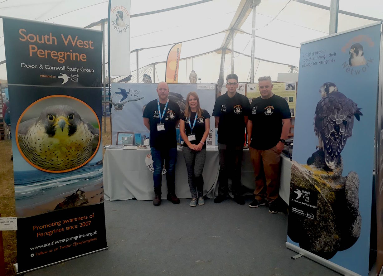 South West Peregrine Bird Fair